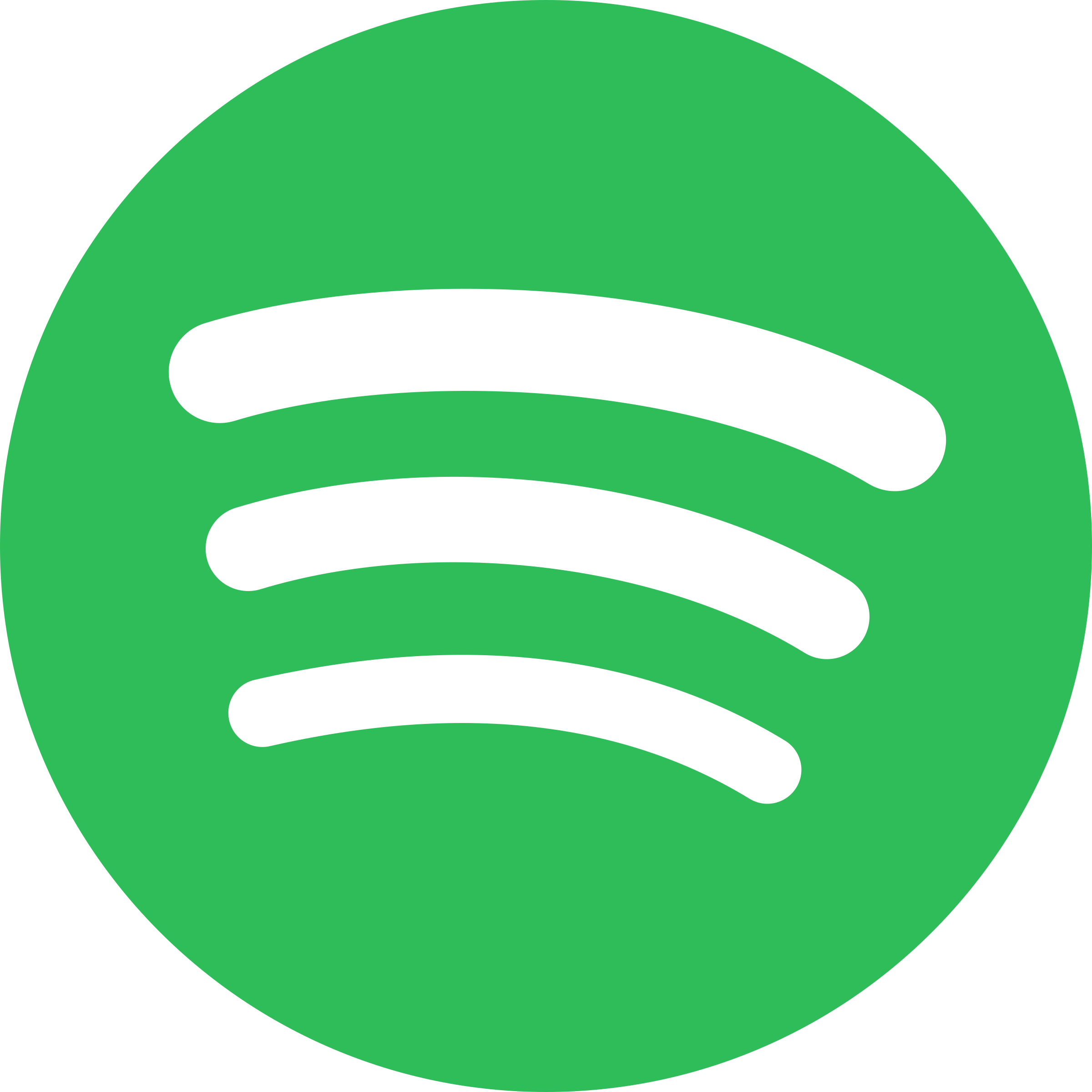 Follow Us on Spotify